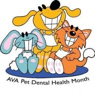 AVA Pet Dental Month Db0dd35088769fe35a5d5fe0010c73d1