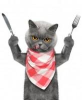 Cat Knife Fork Ae0719f11fae35160649191391d52825