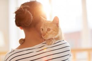 Cat On Shoulder C22bcdf01ebb5bddd1ba585e8113e498