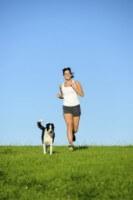 Dog Running C92ba1b895ff2a29d8289852d0f4150d