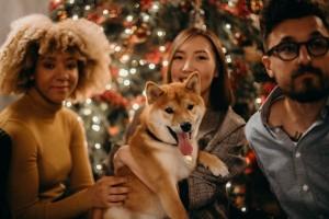 Family Dog Xmas 7953e4ff82cdb83d23e07f9ef51a7459