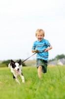 Kid And Dog 0630844cc65da3c53b69cb6684776288