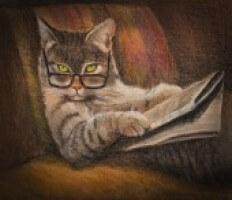 Old Cat Illustration Cc7695b27c5a719c79ff63552fc42012