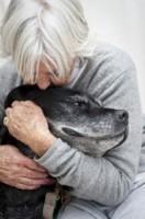 Old Dog Cuddle A498d53eb85f973f05c6873f3f28199e