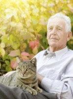Old Man Old Cat A88567fbddb7e79e7162766a776852b8