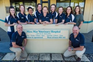 Team Outside Clinic Small B44ca7ca5fea261539c46d47c1c5a338